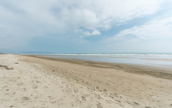 <p>Amazing Beachfront Land 1522m2, cost $65 per s…