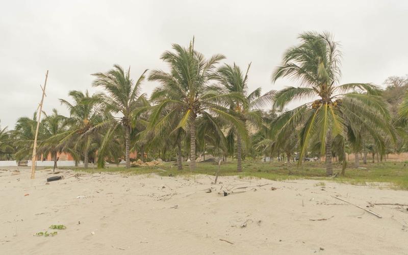 Beachfront view Jama, Ecuador Nikon D7500 by Lourdes Mendoza