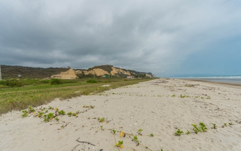 <p>Amazing Beachfront Land 1470m2, cost $65 per s…