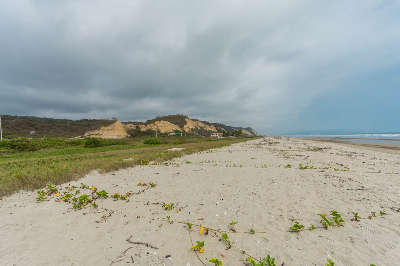 <p>Amazing Beachfront Land 1470m2, cost $65 per s…
