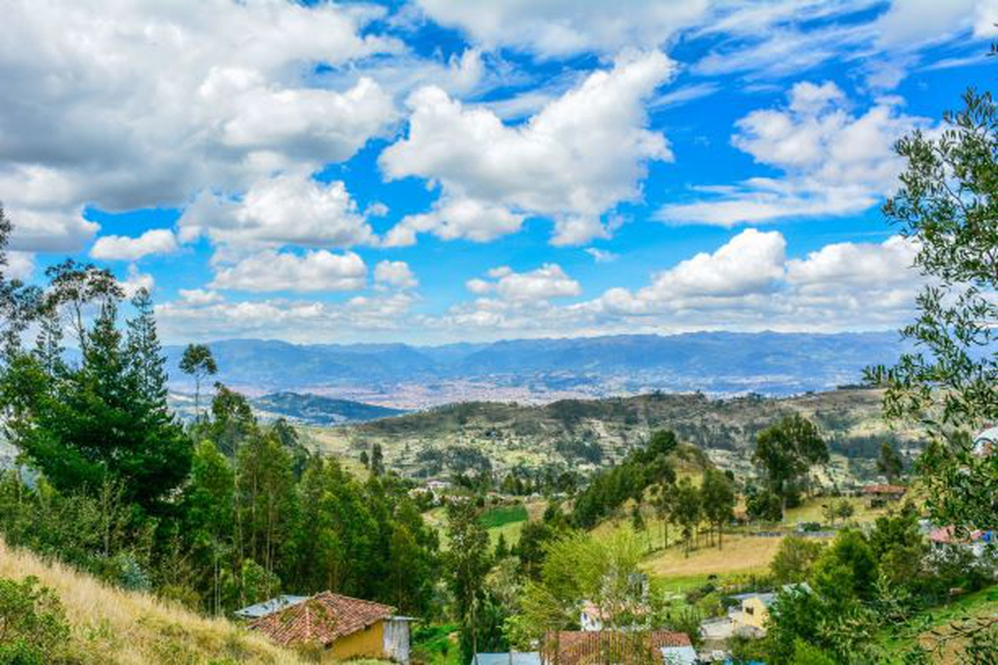 <p>This spacious, single-level 3+ bedroom home of…